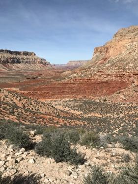 Gorgeous canyon views