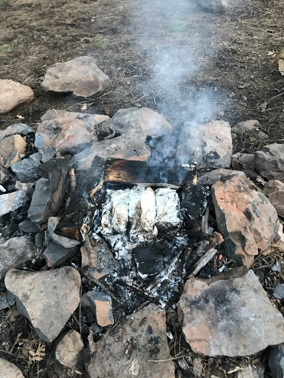 Foil dinners on the campfire!