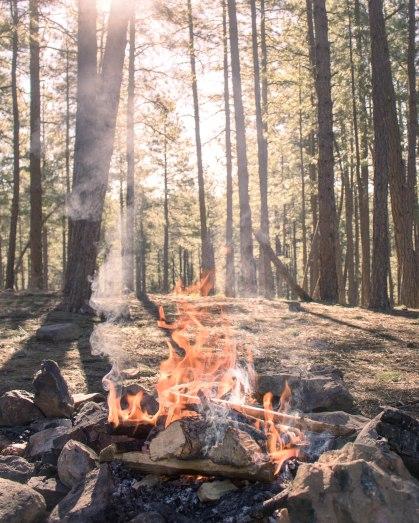Campfire in Arizona