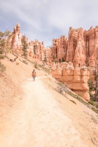Hiking the Navajo Loop Trail