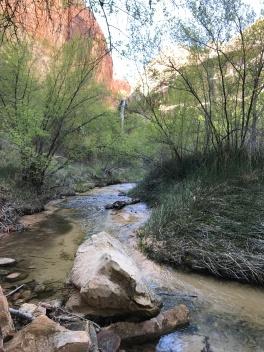 The lush hike!