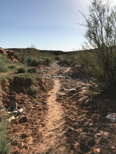 The sandy trail