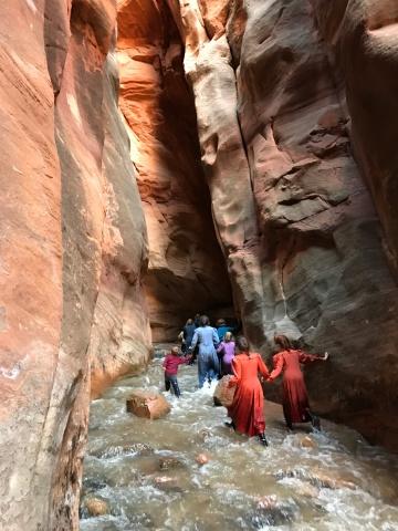 Hikers wading through Kanarra Creek