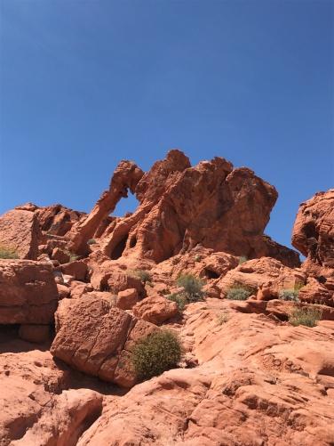 Elephant Rock!