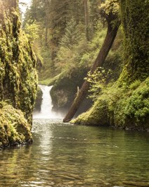 Punch Bowl Falls from the bottom
